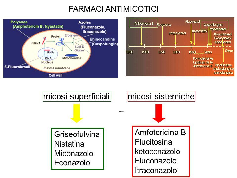 micosi superficiali micosi sistemiche FARMACI ANTIMICOTICI