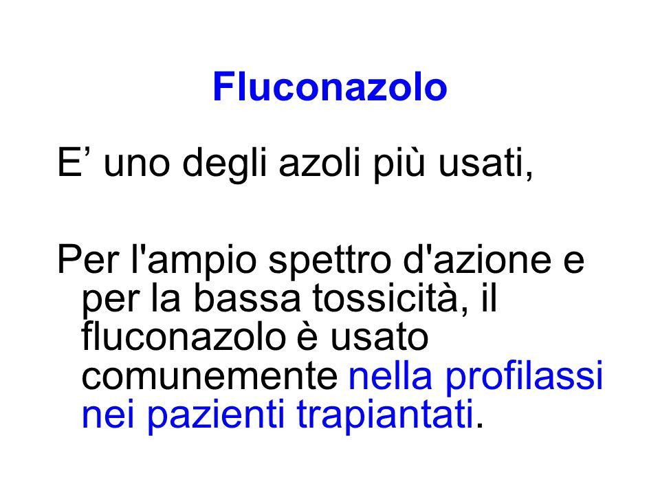 Fluconazolo E' uno degli azoli più usati,