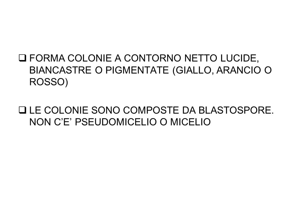 FORMA COLONIE A CONTORNO NETTO LUCIDE, BIANCASTRE O PIGMENTATE (GIALLO, ARANCIO O ROSSO)
