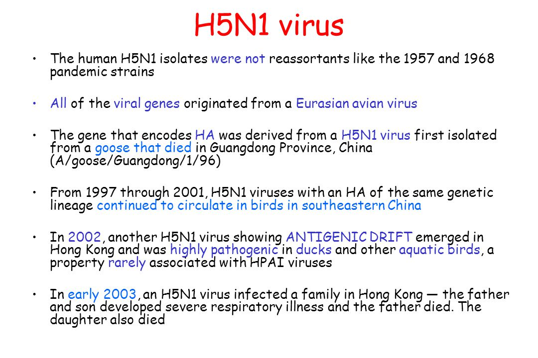 H5N1 virus The human H5N1 isolates were not reassortants like the 1957 and 1968 pandemic strains.