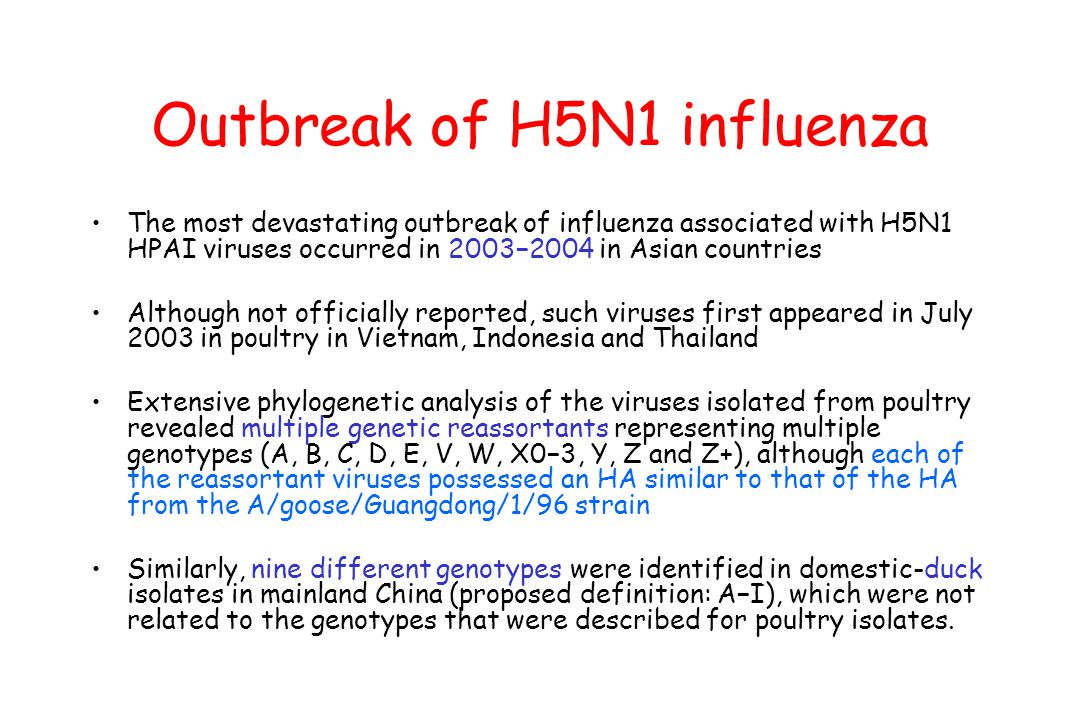 Outbreak of H5N1 influenza