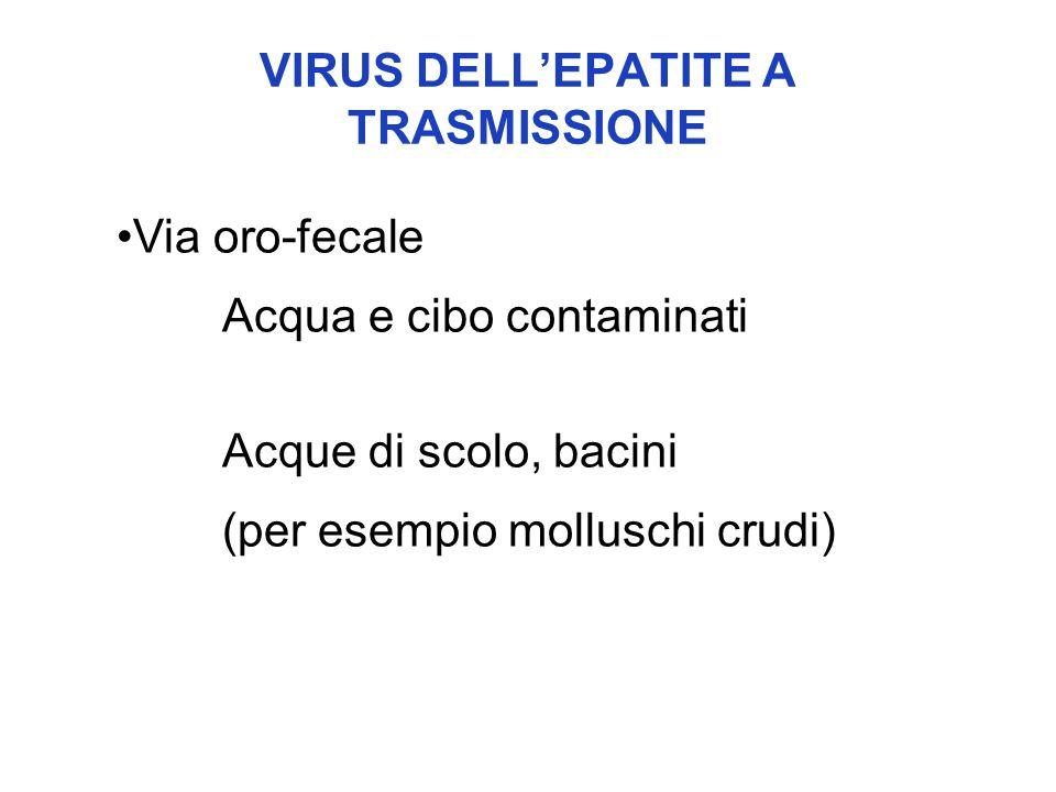 VIRUS DELL'EPATITE A TRASMISSIONE