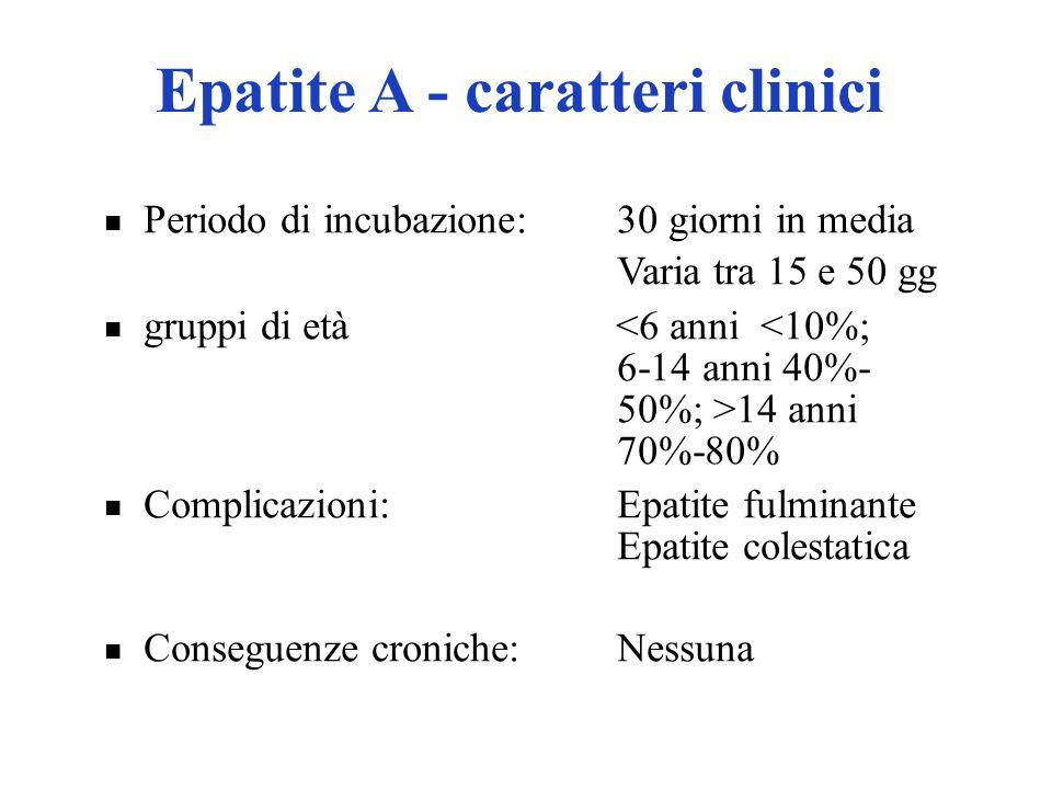 Epatite A - caratteri clinici