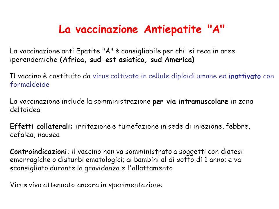 La vaccinazione Antiepatite A