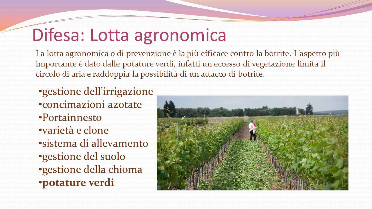 Difesa: Lotta agronomica