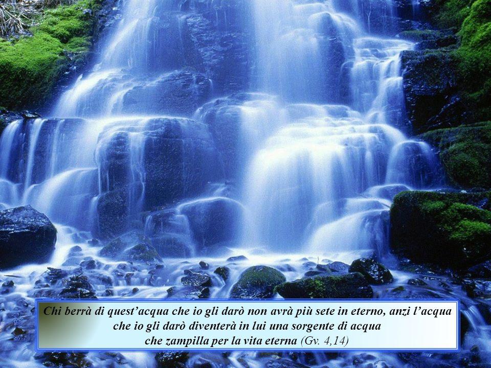 che zampilla per la vita eterna (Gv. 4,14)