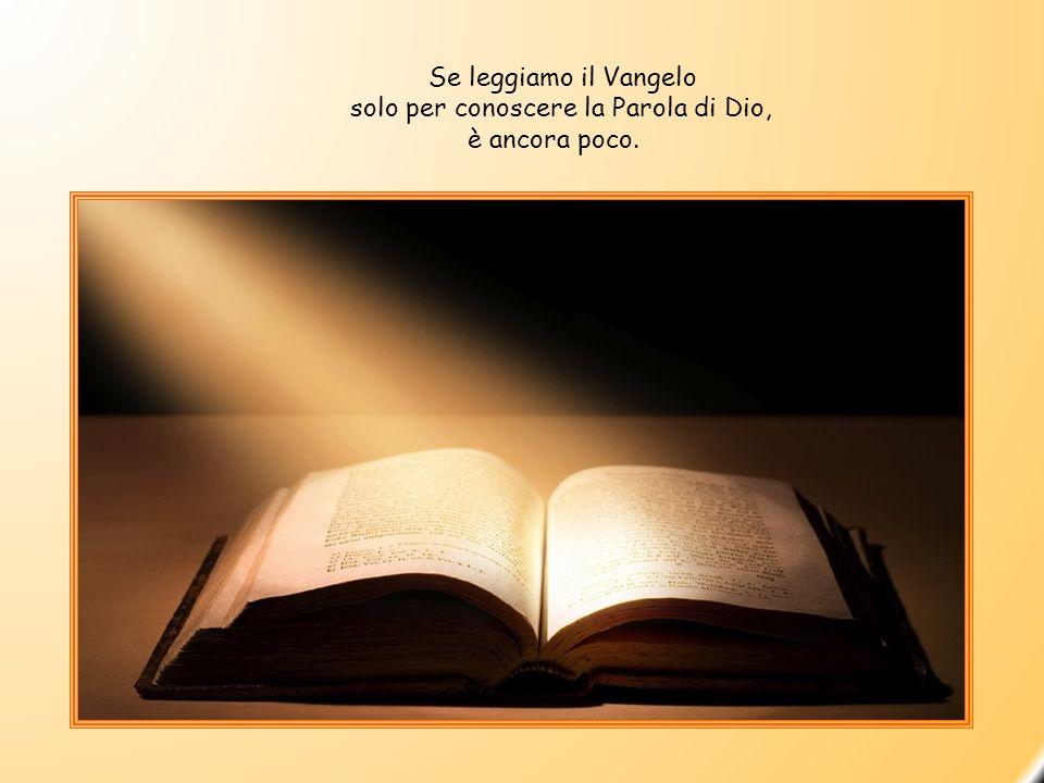 Se leggiamo il Vangelo solo per conoscere la Parola di Dio, è ancora poco.