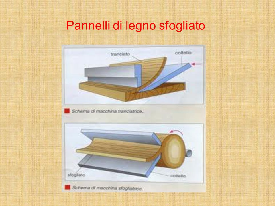 Il legno ppt video online scaricare for Pannelli di cartone