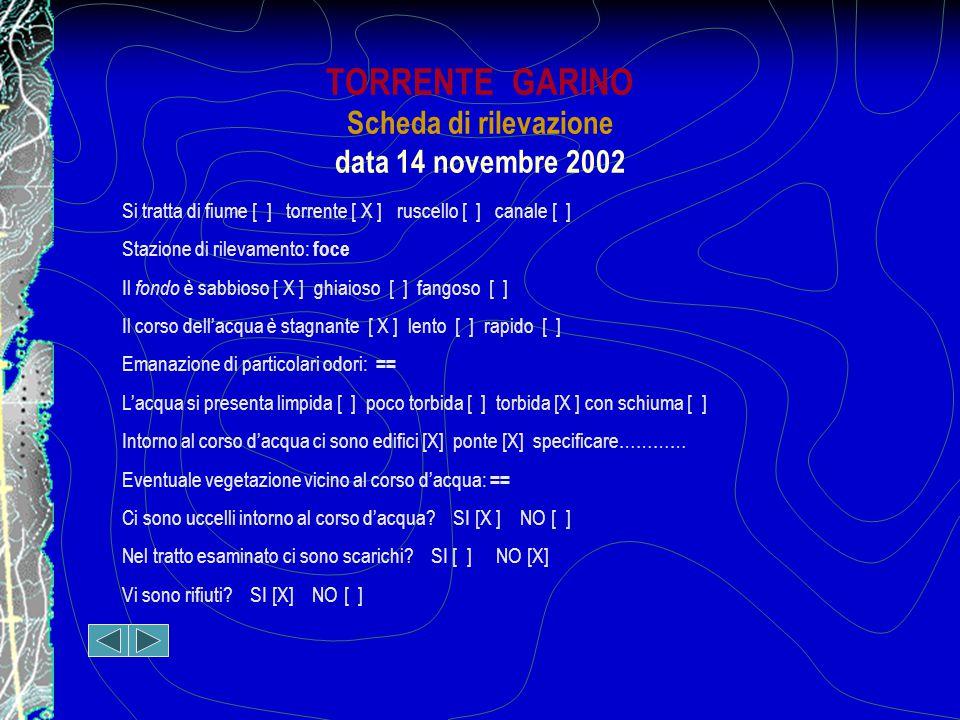 TORRENTE GARINO Scheda di rilevazione data 14 novembre 2002