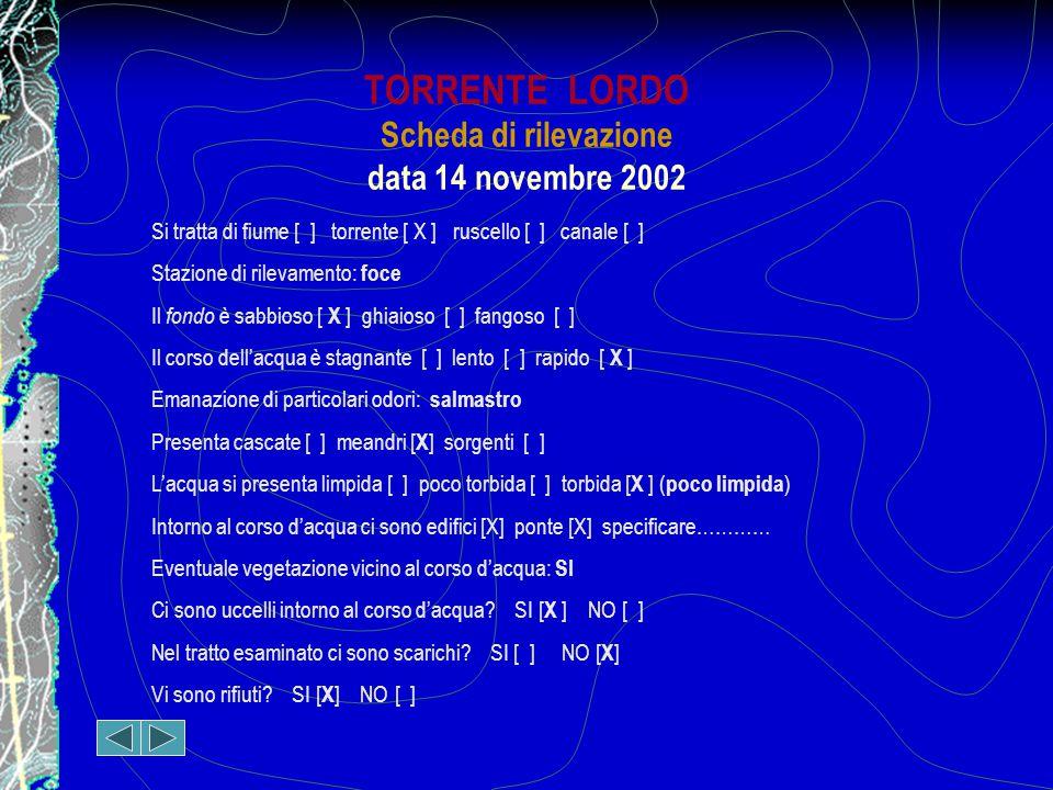TORRENTE LORDO Scheda di rilevazione data 14 novembre 2002