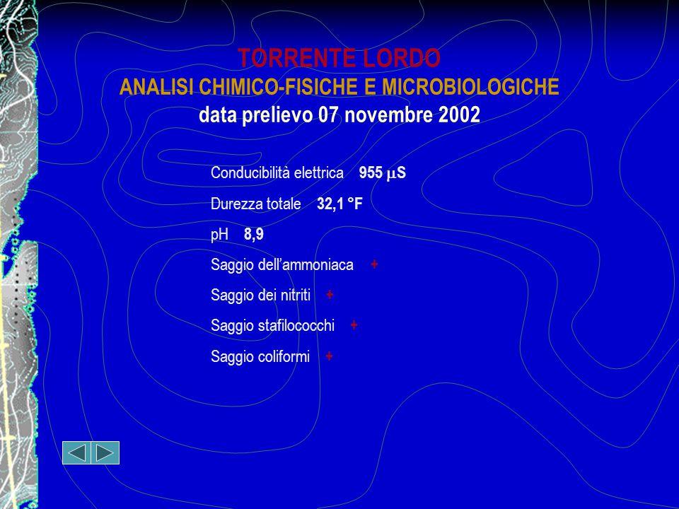 TORRENTE LORDO ANALISI CHIMICO-FISICHE E MICROBIOLOGICHE data prelievo 07 novembre 2002