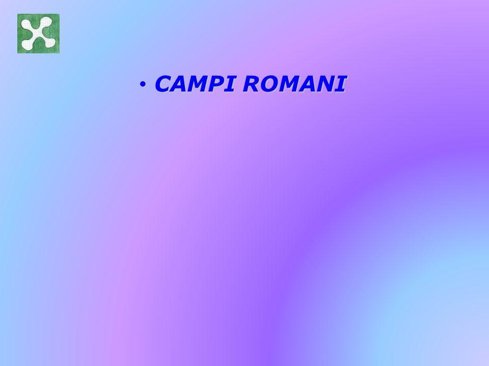CAMPI ROMANI