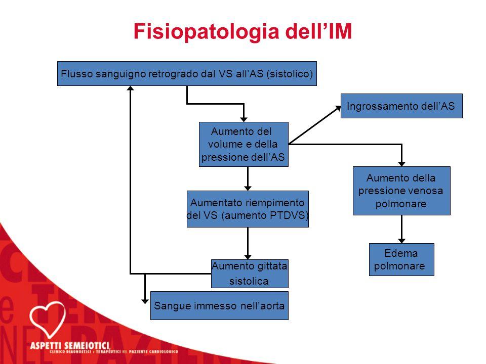 Fisiopatologia dell'IM