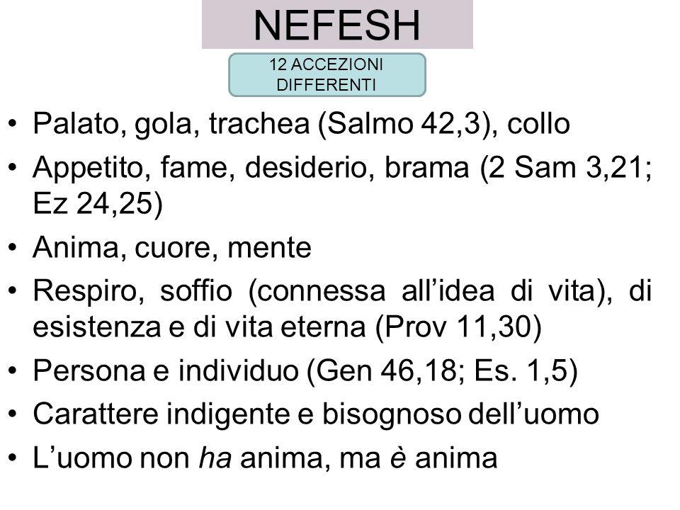 NEFESH Palato, gola, trachea (Salmo 42,3), collo