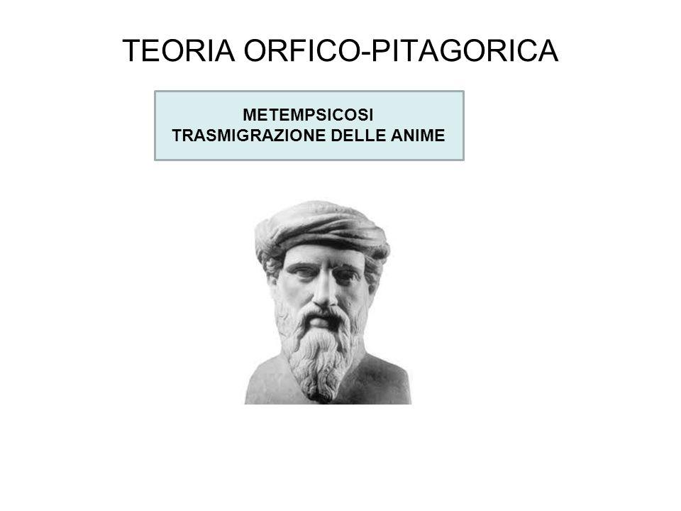 TEORIA ORFICO-PITAGORICA