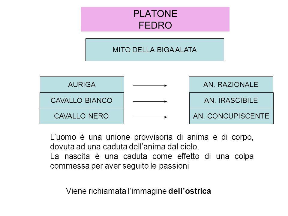 PLATONE FEDRO MITO DELLA BIGA ALATA. AURIGA. AN. RAZIONALE. CAVALLO BIANCO. AN. IRASCIBILE. CAVALLO NERO.
