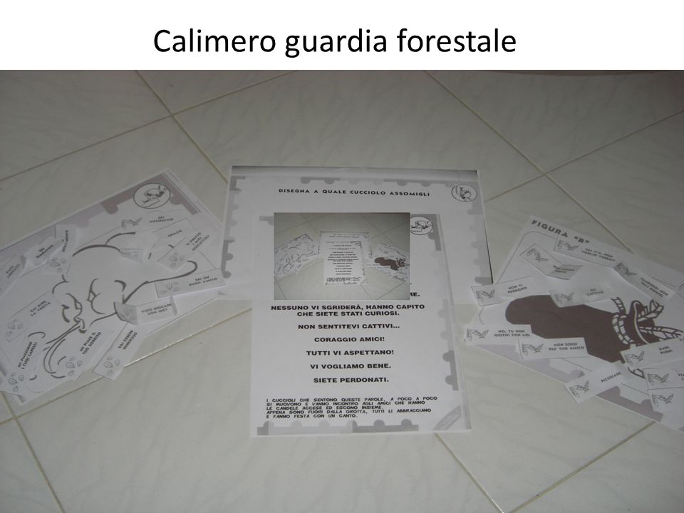 Calimero guardia forestale