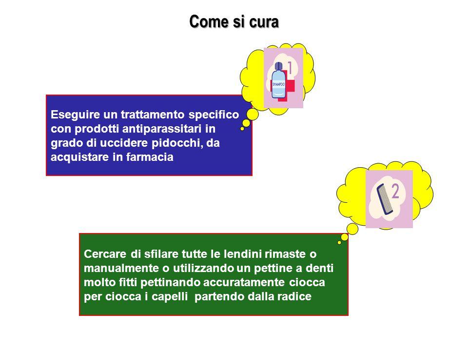 Come si cura Eseguire un trattamento specifico con prodotti antiparassitari in grado di uccidere pidocchi, da acquistare in farmacia.