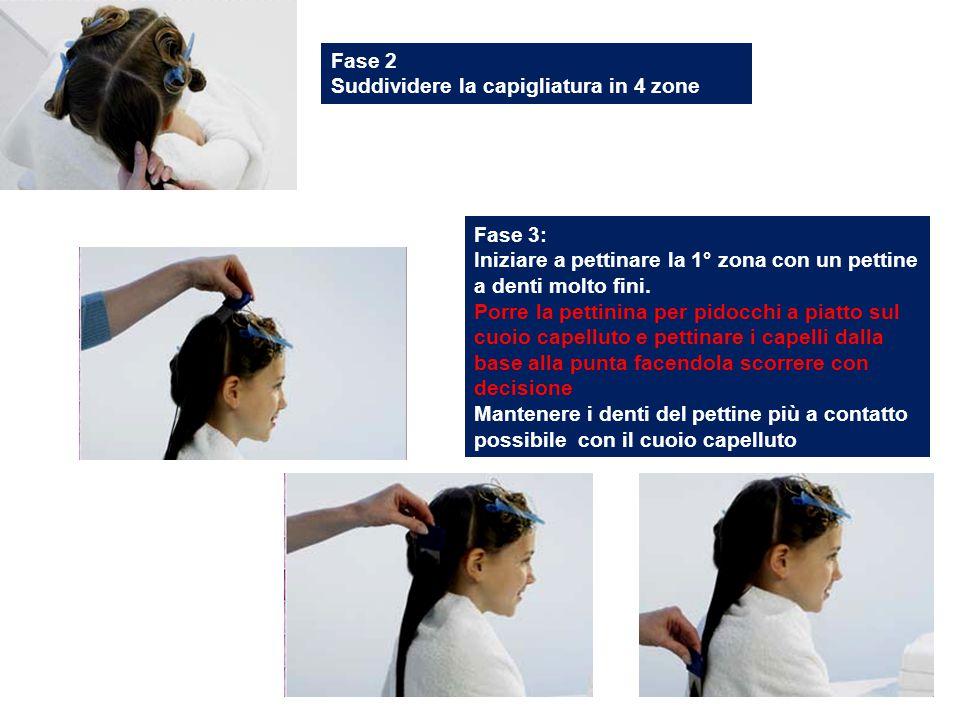 Fase 2 Suddividere la capigliatura in 4 zone. Fase 3: Iniziare a pettinare la 1° zona con un pettine a denti molto fini.