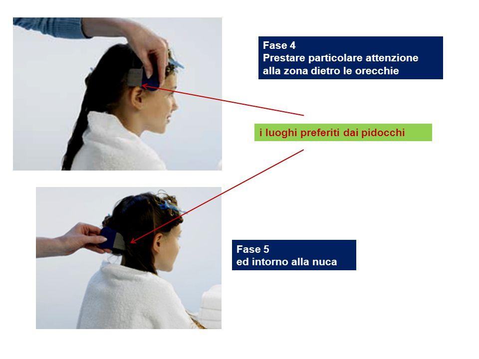 Fase 4 Prestare particolare attenzione alla zona dietro le orecchie. i luoghi preferiti dai pidocchi.