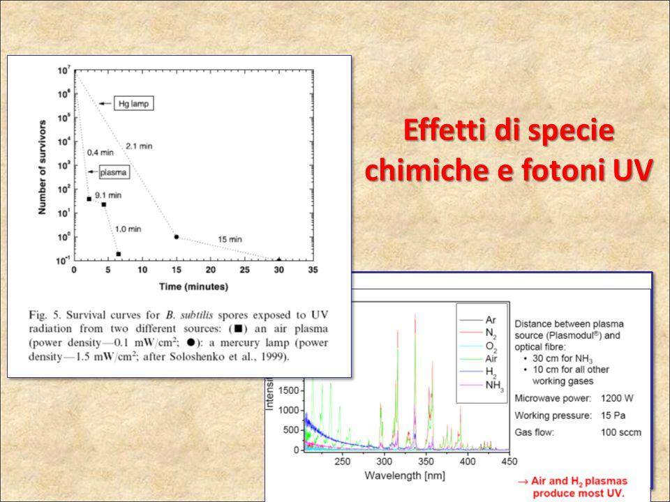 Effetti di specie chimiche e fotoni UV