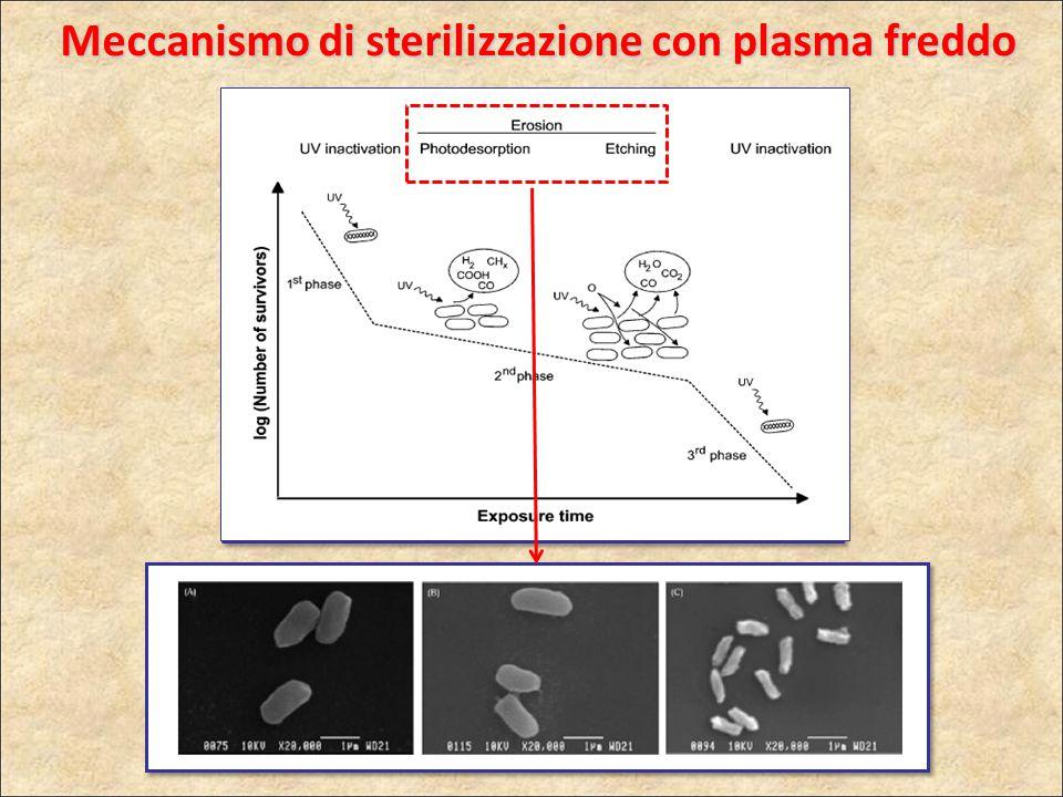 Meccanismo di sterilizzazione con plasma freddo