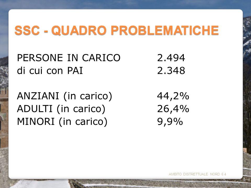 SSC - QUADRO PROBLEMATICHE