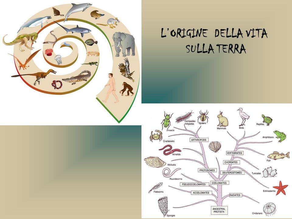 L'ORIGINE DELLA VITA SULLA TERRA