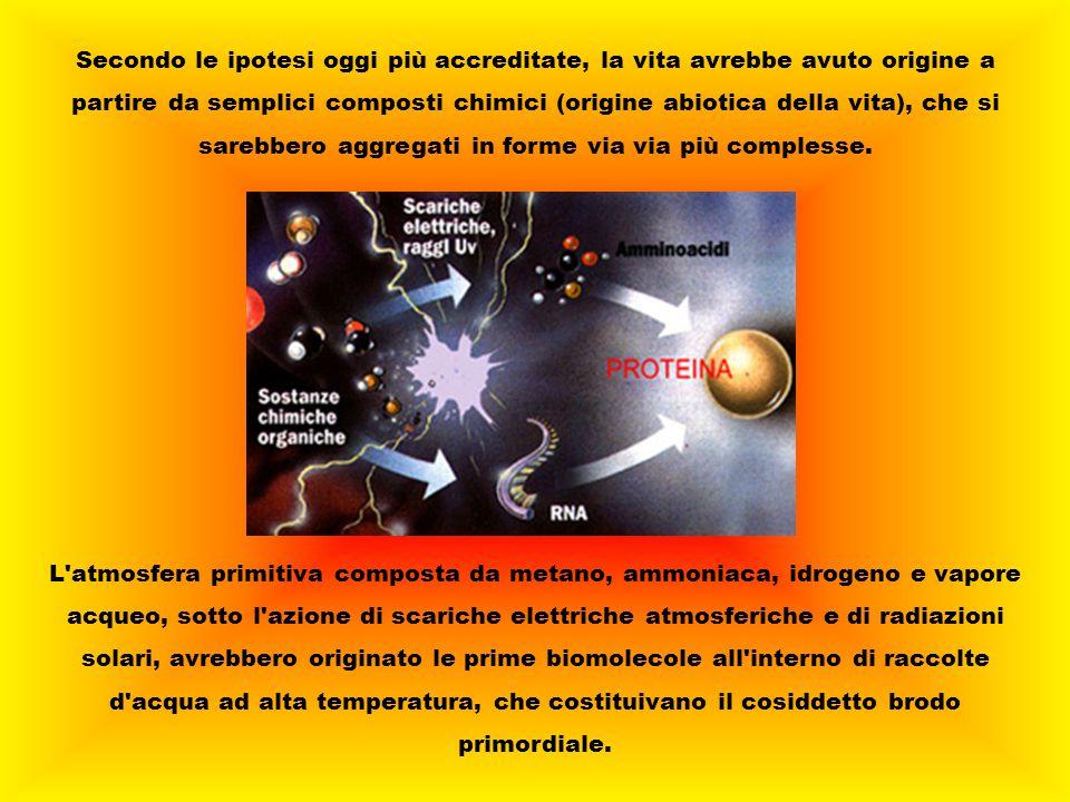 Secondo le ipotesi oggi più accreditate, la vita avrebbe avuto origine a partire da semplici composti chimici (origine abiotica della vita), che si sarebbero aggregati in forme via via più complesse.