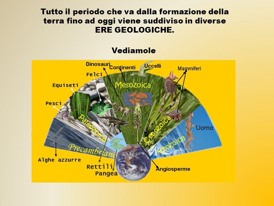 Tutto il periodo che va dalla formazione della terra fino ad oggi viene suddiviso in diverse ERE GEOLOGICHE.