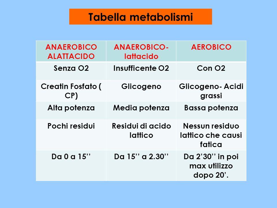 Tabella metabolismi ANAEROBICO ALATTACIDO ANAEROBICO-lattacido