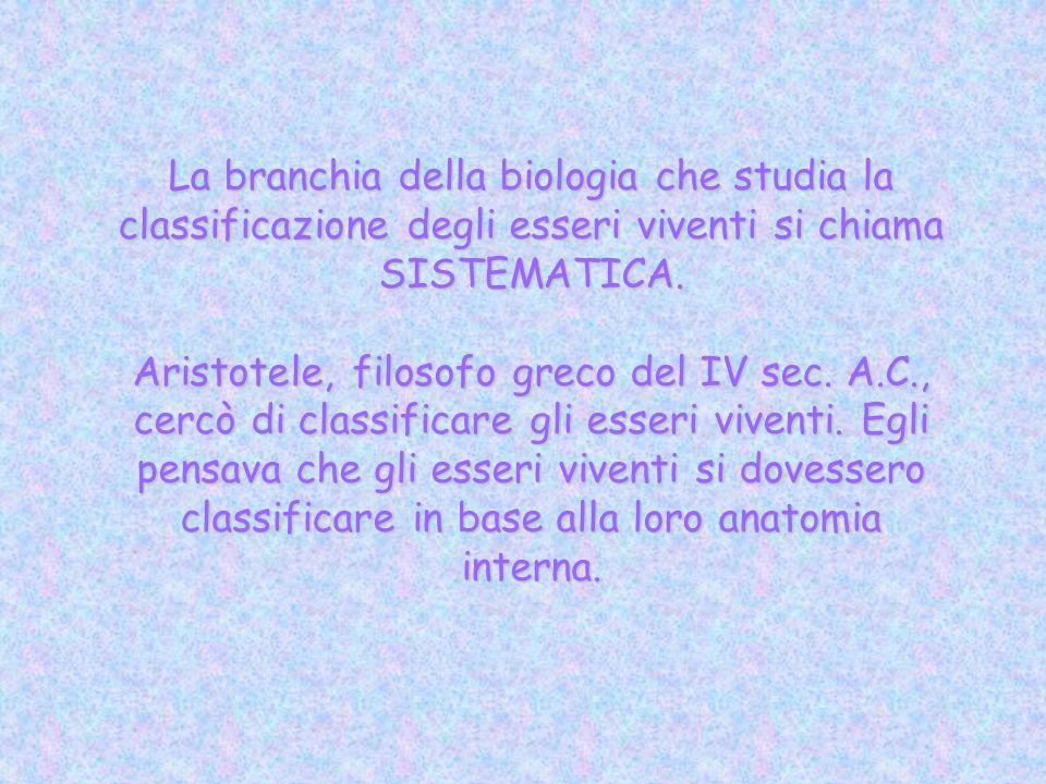 La branchia della biologia che studia la classificazione degli esseri viventi si chiama SISTEMATICA.