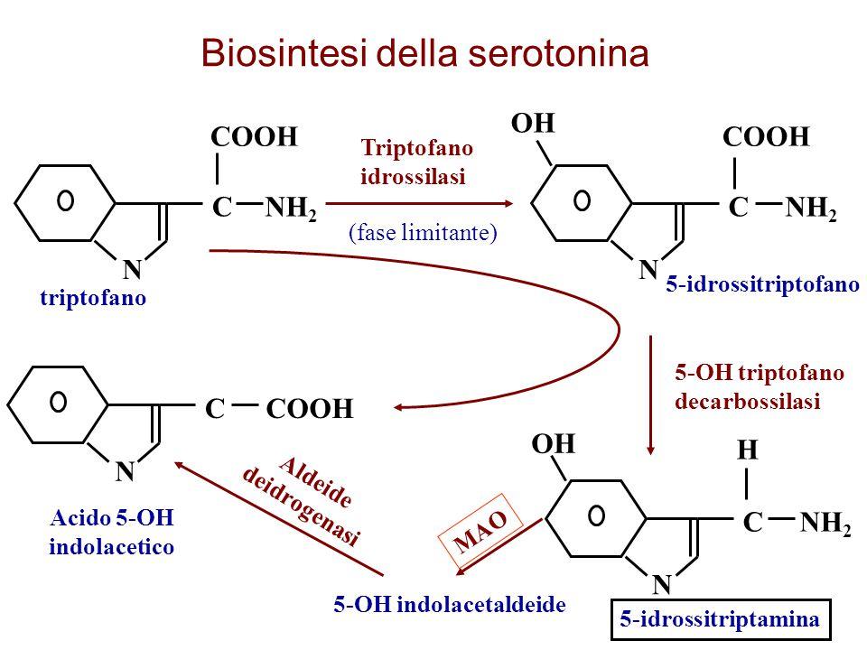 Acido 5-OH indolacetico