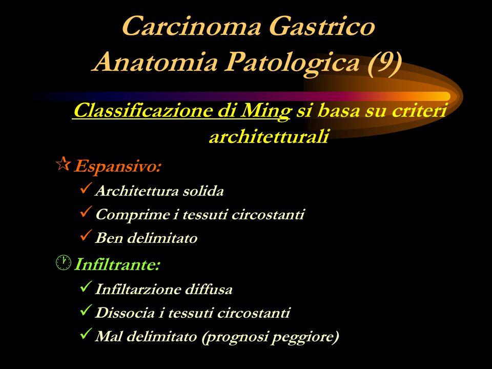 Carcinoma Gastrico Anatomia Patologica (9)