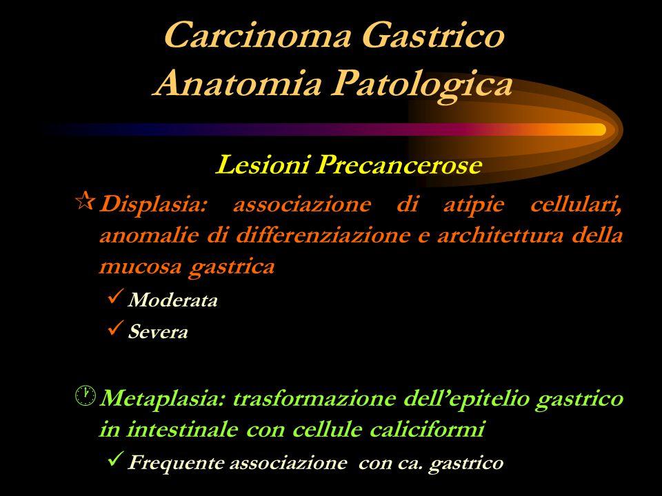 Carcinoma Gastrico Anatomia Patologica