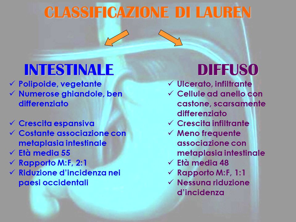 CLASSIFICAZIONE DI LAUREN