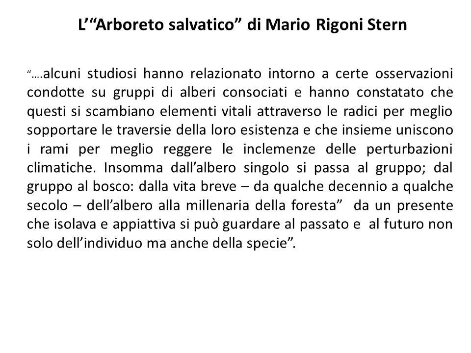 L' Arboreto salvatico di Mario Rigoni Stern