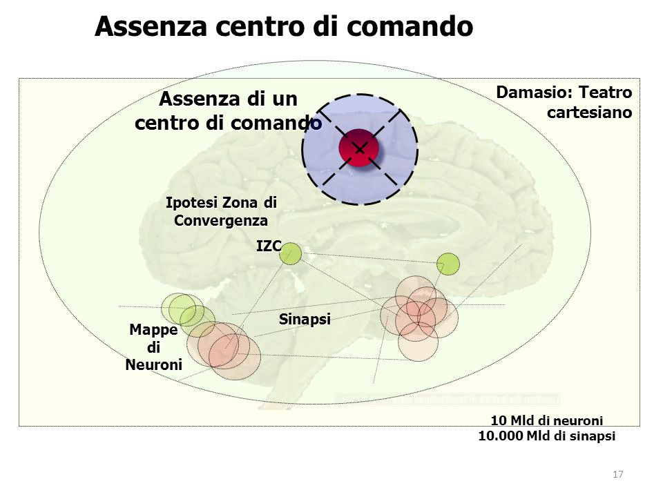 Assenza centro di comando Ipotesi Zona di Convergenza