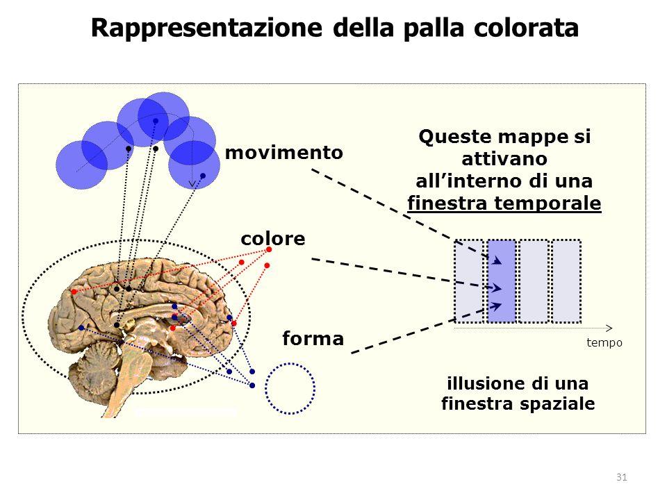 Rappresentazione della palla colorata