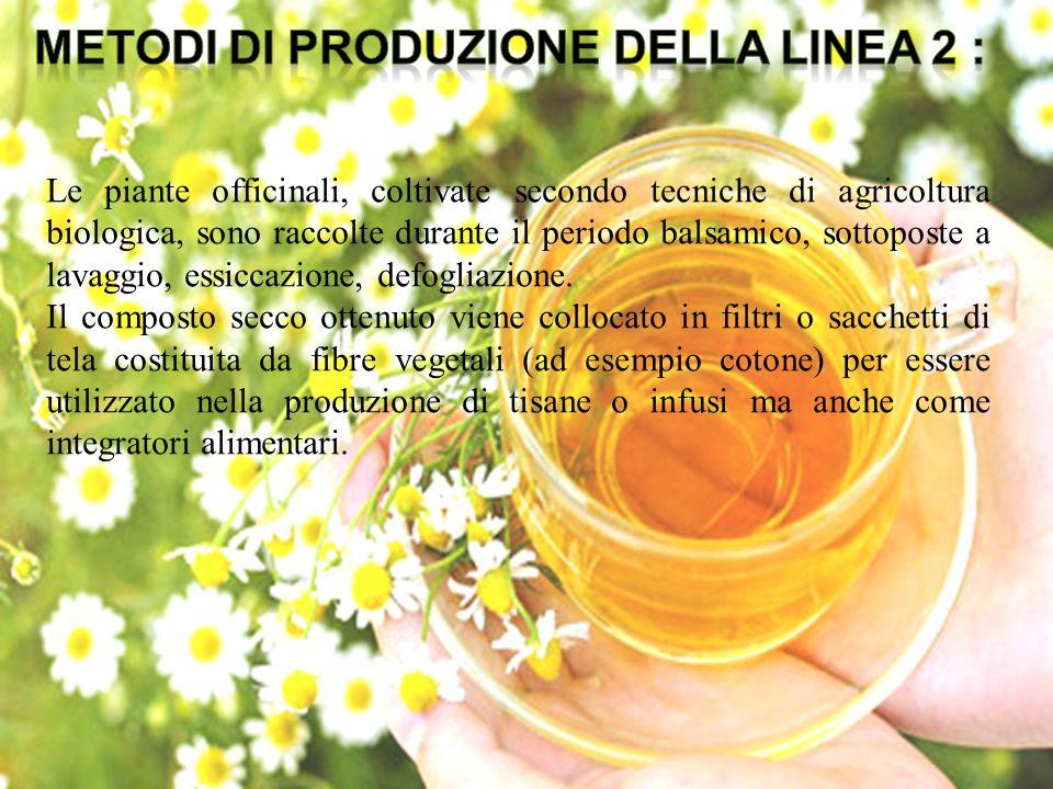 METODI DI PRODUZIONE DELLA LINEA 2 :