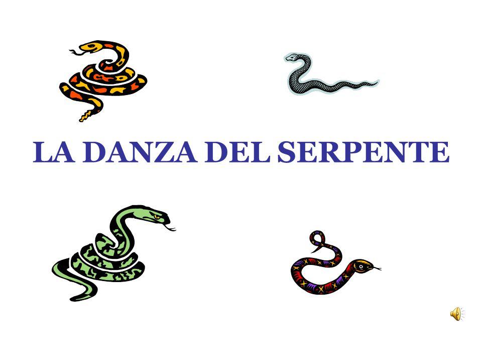 LA DANZA DEL SERPENTE