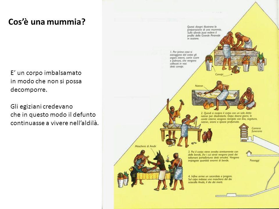 Cos'è una mummia E' un corpo imbalsamato