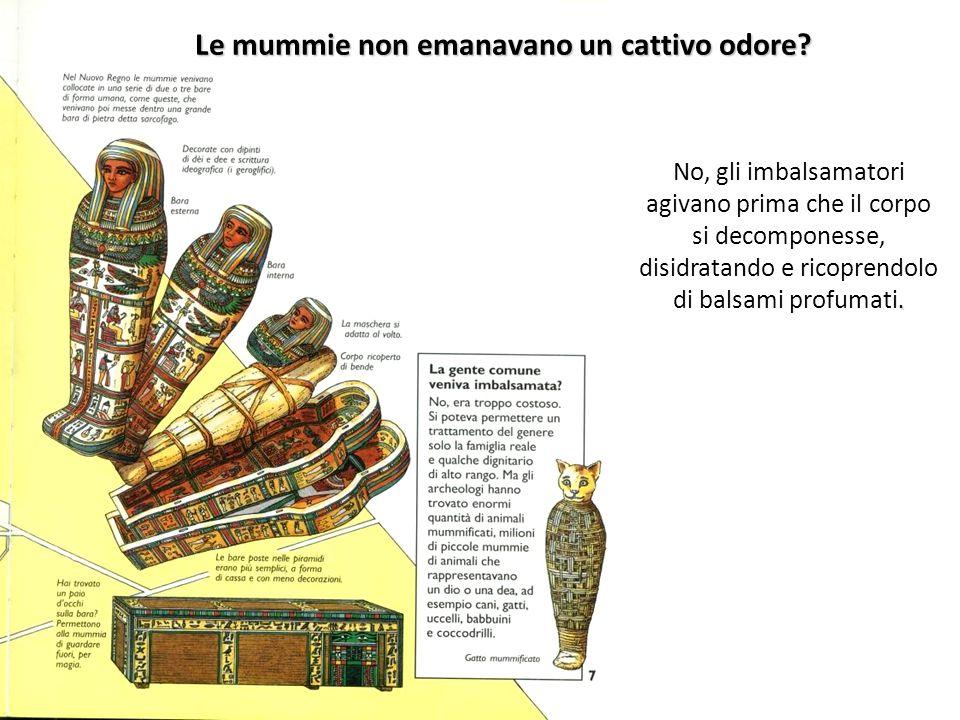Le mummie non emanavano un cattivo odore