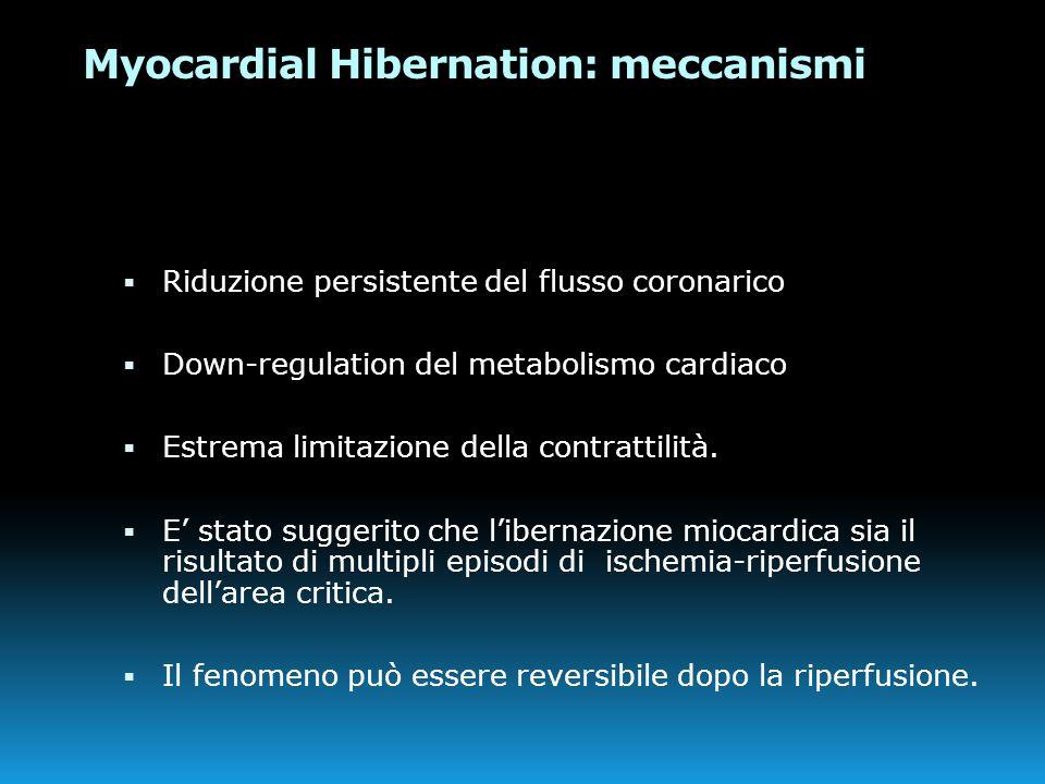 Myocardial Hibernation: meccanismi