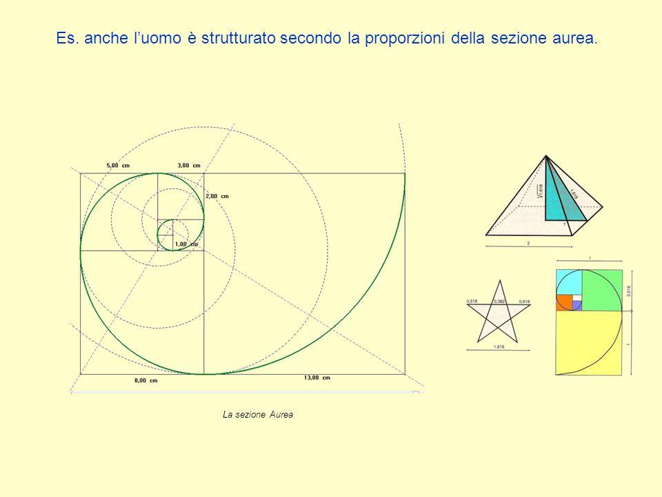 Es. anche l'uomo è strutturato secondo la proporzioni della sezione aurea.