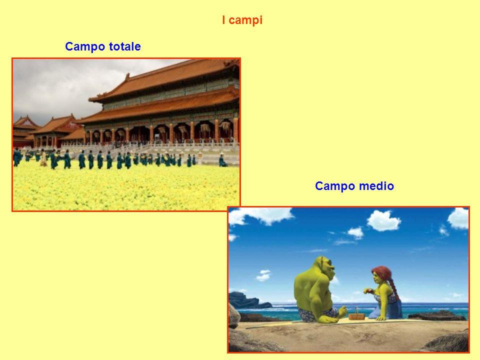 I campi Campo totale Campo medio