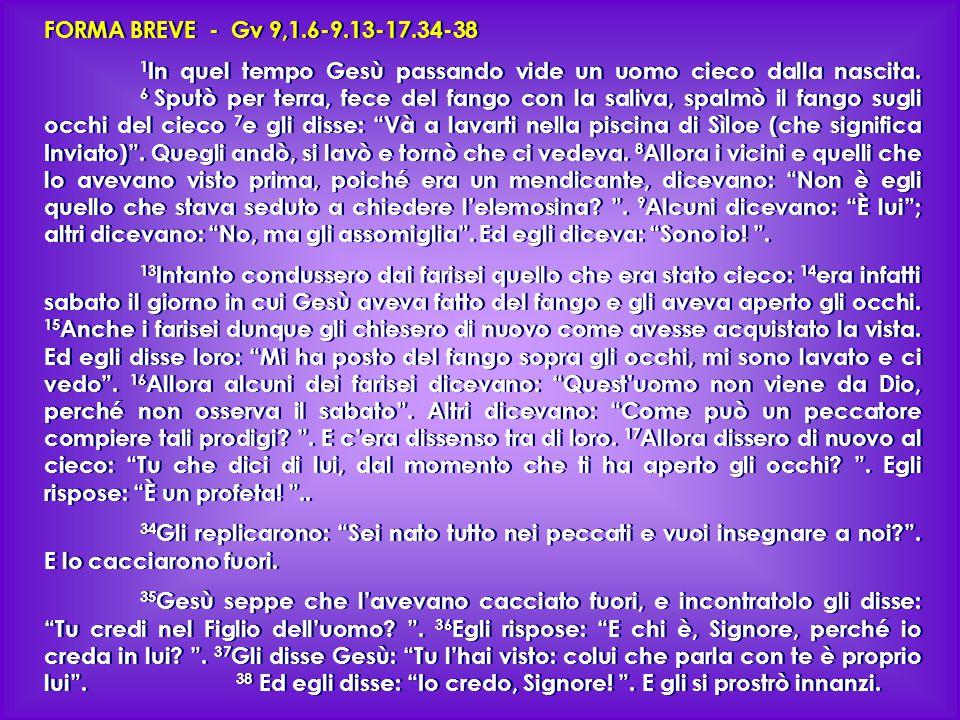 FORMA BREVE - Gv 9,1.6-9.13-17.34-38