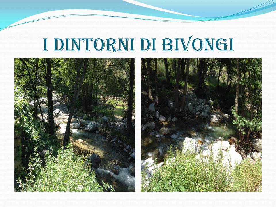 I dintorni di Bivongi
