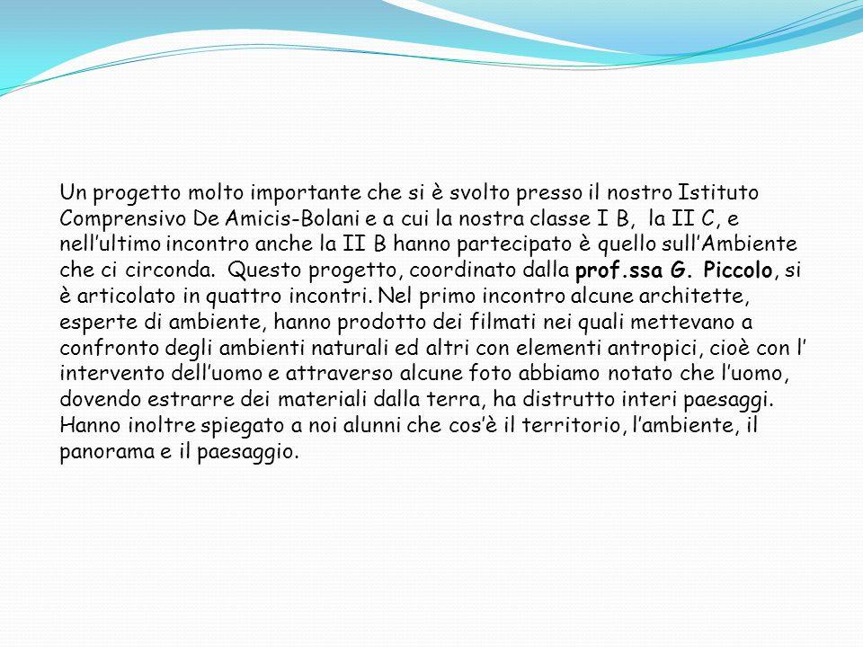Un progetto molto importante che si è svolto presso il nostro Istituto Comprensivo De Amicis-Bolani e a cui la nostra classe I B, la II C, e nell'ultimo incontro anche la II B hanno partecipato è quello sull'Ambiente che ci circonda.