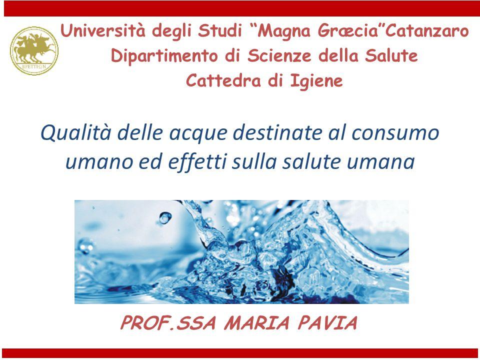 Università degli Studi Magna Græcia Catanzaro